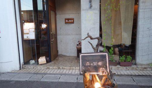 森の賢者(石垣島)