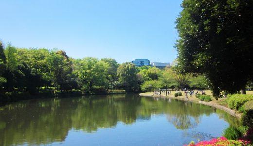 これは意外!福岡より東京の方が暑い?!夏の気温を比較!