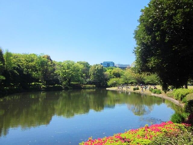 福岡より東京の方が暑い