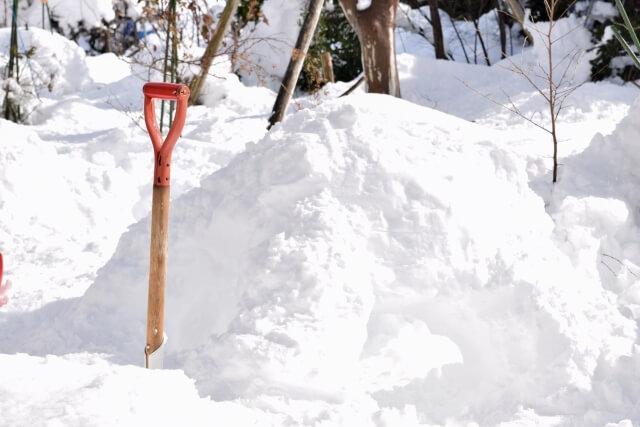 福岡 雪が降る
