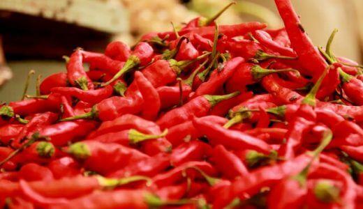 博多の激辛焼肉「蓮」「玄風館」マツコ会議で紹介されたのはどっち?